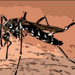 Cuál es el mejor remedio casero para picadura de mosquito