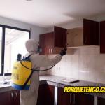 Como Librarse De La Plaga De Hormigas En Casa